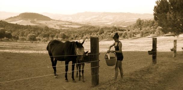 hills of tuscany erin ireland