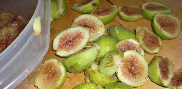 tuscan figs erin ireland 4