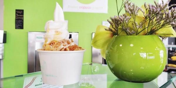 Frux Organic Frozen Yogurt Lonsdale Quay