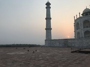 Intrepid Travel India Vegan Food Adventure taj mahal