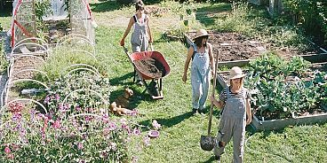 Victory Gardens founders